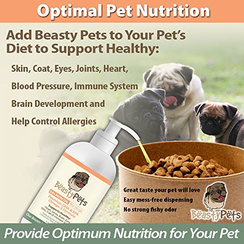 Salmon oil for dogs by beasty pets non gmo omega 3 fish for Can you give dogs fish oil