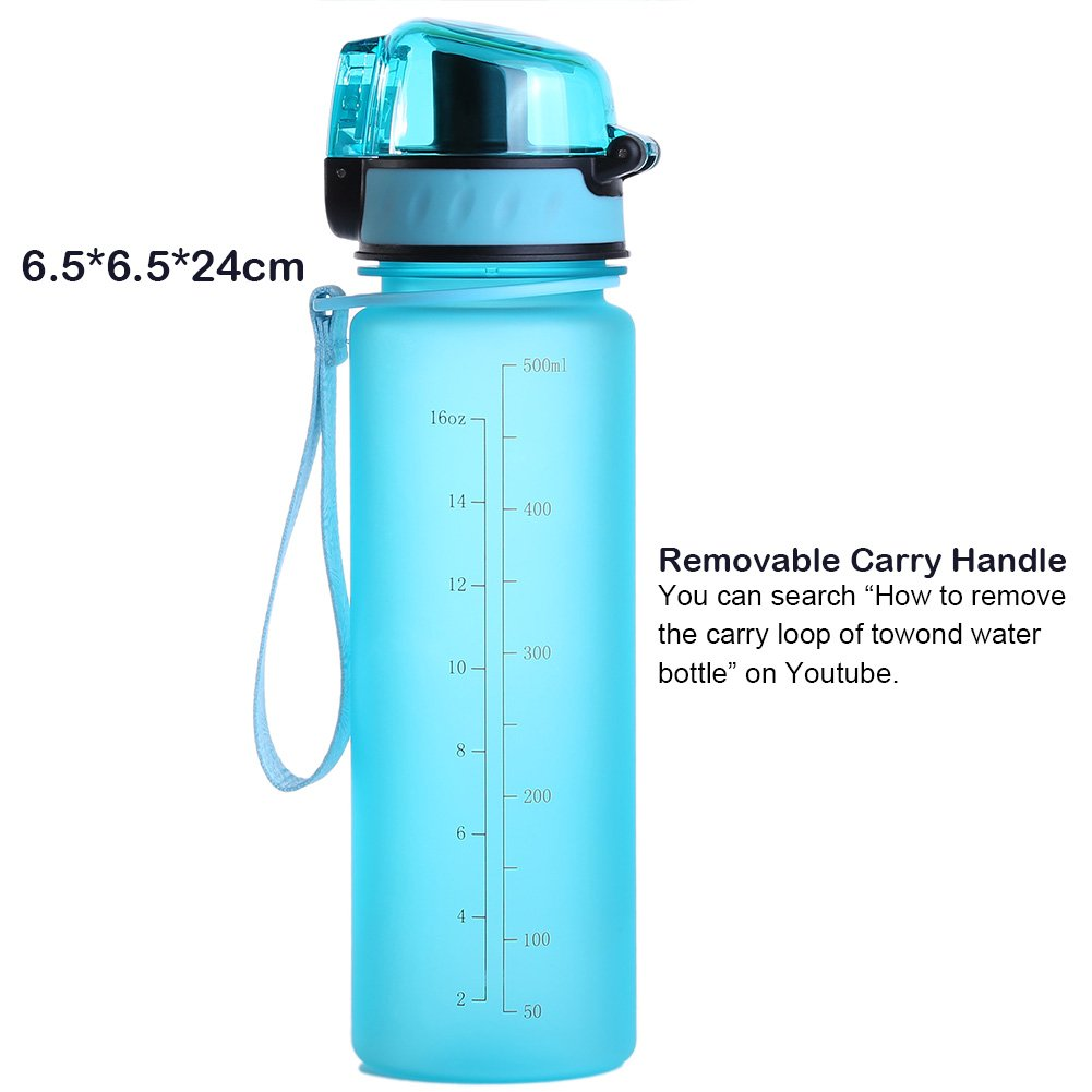 Sports Water Bottle, 16OZ Small One Click Open Leak Proof Flip Top, Non-Toxic BPA Free Eco-Friendly Tritan Co-Polyester Plastic, Blue