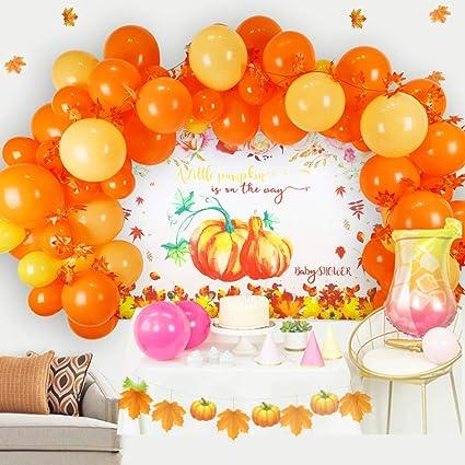 Photo Prop Baby Shower Pumpkin Garland First Birthday Fall Party