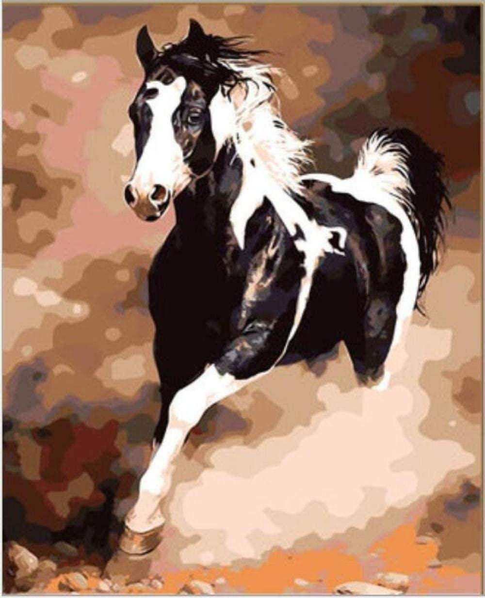 Pintura por números pintura al óleo digital caballo pentium dibujado para niños adultos estudiantes principiantes arte de la pared fotos lienzo 40 x 50 cm