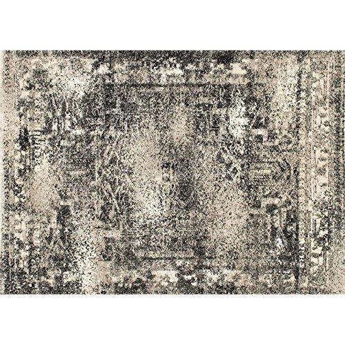 Loloi Rugs,  VIERA COLLECTION,  VIERVR-03AS003A57,  ASH  3'-10