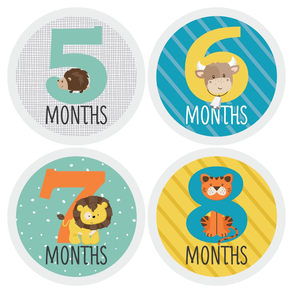 Zoo Animals - Baby Monthly Sticker Set - Baby Shower Gift Ideas - 12 Piece by Big Dot of Happiness (Image #3)