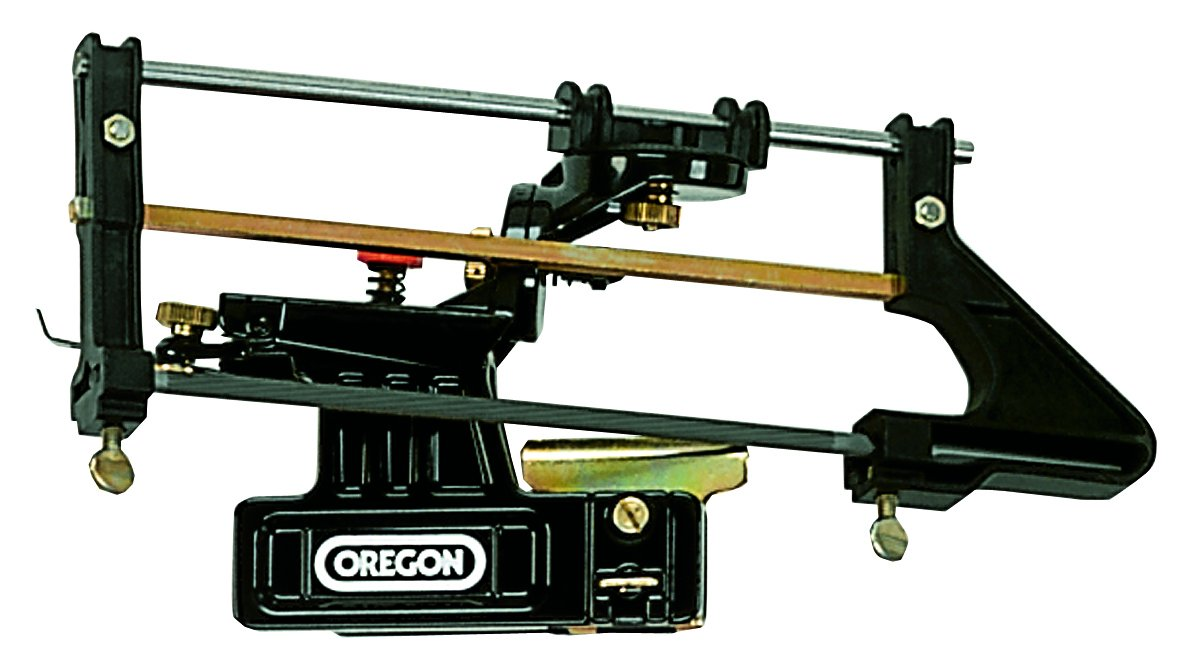 Professional Filing Guide Oregon 557849