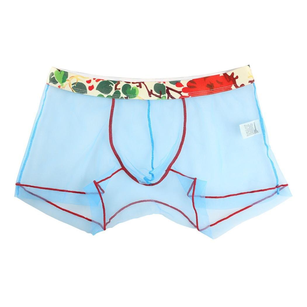 PASATO 5PC Men Mesh Transparent Underwear Men Boxer Briefs Pouch Soft Underpants