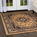 Premium Sakarya Area Rug by Home Dynamix| Traditional Persian-Inspired Carpet | Stylish Medallion Print and Classic Boarder Design | Dark Brown, Light Brown, Cream  7'8