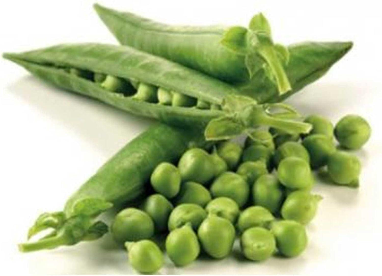 Thomas Laxton Pea Garden Seeds - 1 Lbs - Non-GMO, Heirloom Vegetable Gardening & Microgreens Seeds