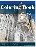 img - for Castle 30 Pictures, Sketch Grey Scale Coloring Book for Kids Adults and Grown Ups: Color me Coloring Book for Mindfulness and Stress Relief Relaxation (Volume 2) book / textbook / text book