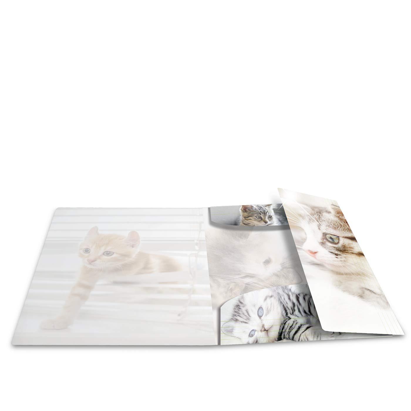 Eckspanner-Mappe HERMA 19328 Sammelmappe DIN A4 Tiere Katzen aus stabilem Kunststoff mit Hochglanz-Effekt und bedruckten Innenklappen 1 Zeichenmappe f/ür Kinder Gummizugmappe