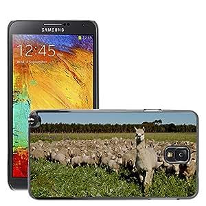 Etui Housse Coque de Protection Cover Rigide pour // M00112553 Rebaño de Ovejas Ovejas Paisaje // Samsung Galaxy Note 3 III N9000 N9002 N9005
