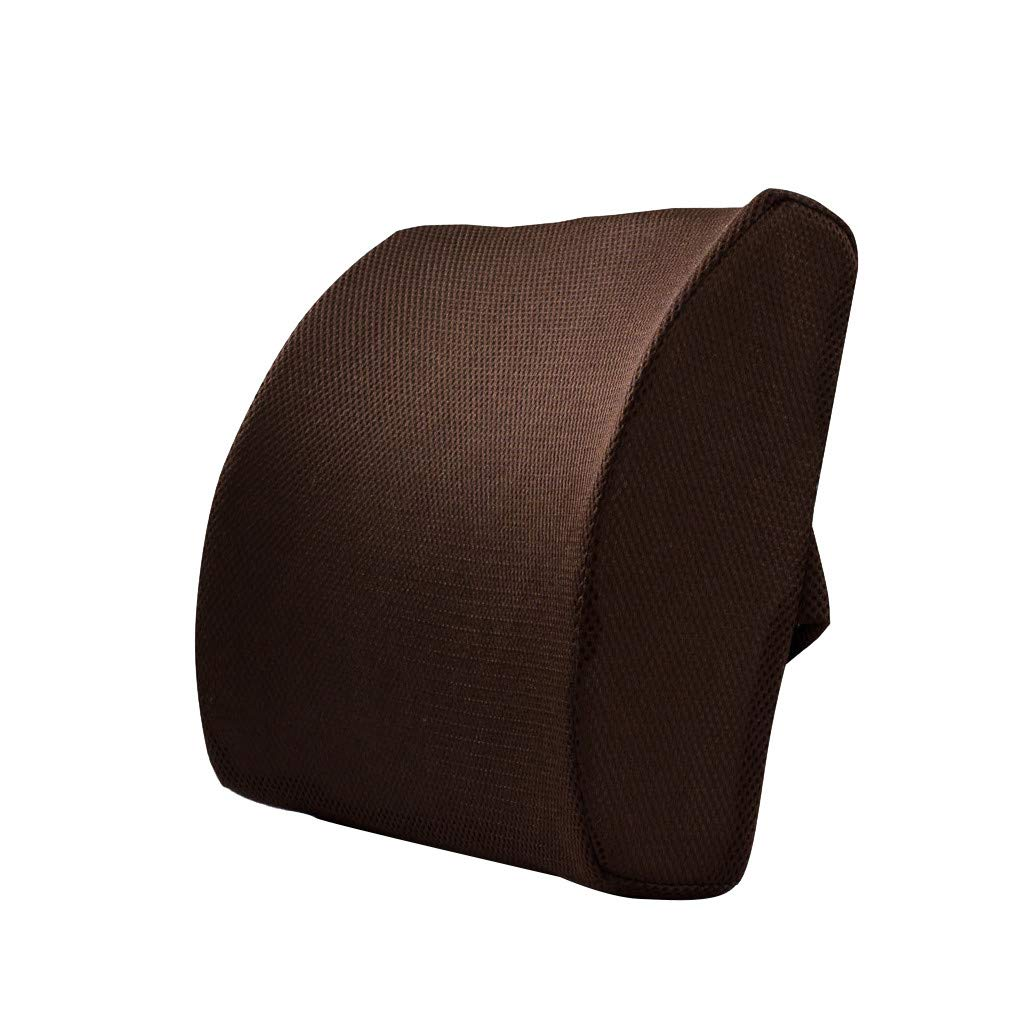 Lebeauty Memory Foam Back Support Cushion 3D Ventilative Mesh Lumbar Support Cushion Back Cushion - Designed for Back Pain Relief - Hypoallergenic Ventilative Mesh - Alleviates Lower Back Pain (Brown)