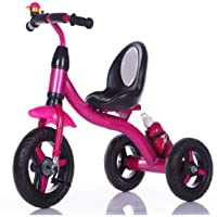 Baby's Tricycle for 1-5 Year Children (Bottle Pink Colour)