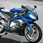 YOHOOLYO-Bloccadisco-Moto-Antifurto-per-Moto-Lucchetto-Allarme-Sonoro-110DB-per-Moto-Bici-e-Scooter-con-Filo-a-Molla-di-12M