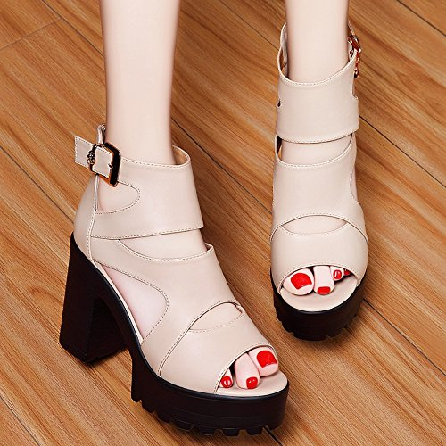 heels Heeled Thick Buckle Sandals Wild Summer Shoes Waterproof With Soles Shoes Female Jqdyl High Beige Women High Thick Bq54RRw