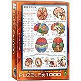 Eurographics Human Body (The Brain) 1000-Piece Puzzle
