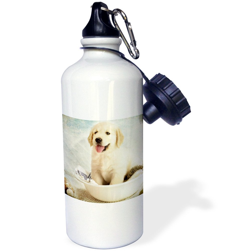 3dRose wb_172989_1 Cute Golden Retriever Puppy Spa Day Art Photo Courtesy Sports Water Bottle, 21Oz, Multicolored