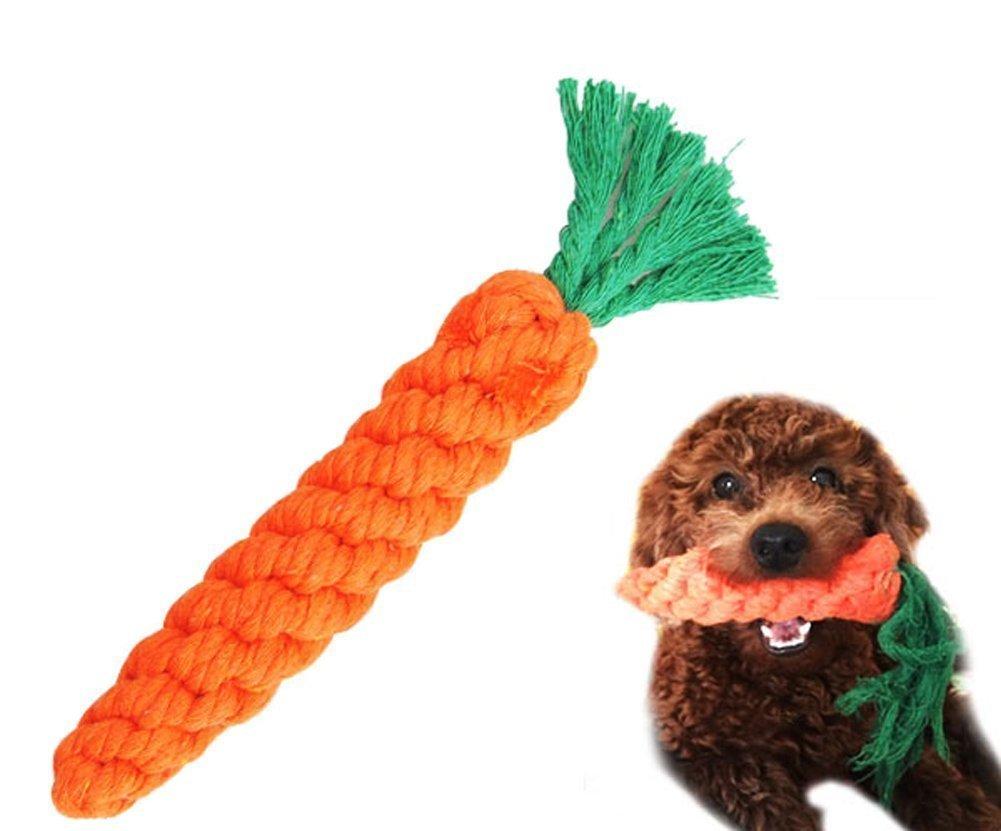SHANF Lindo Masticar Juguete Pajita Cuerda Carrote Dentición Stick Limpieza para Hámster y Perro (Naranja)