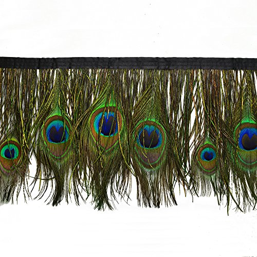 Peacock Eye Feather Trim with bias tape by yard, 6-1/2
