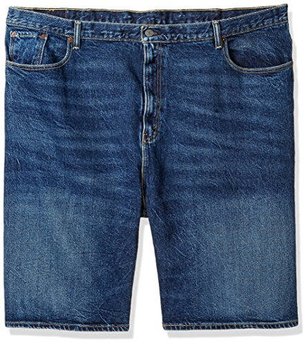 Levi's Men's Big and Tall 569 Loose Straight Short, Garland-Stretch, 48 (569 Shorts Jean Straight Loose)