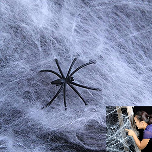 Dazzling Toys Realistic Halloween Spider Webs & Webbing + Spiders - 12 Pack (Halloween Story Web)