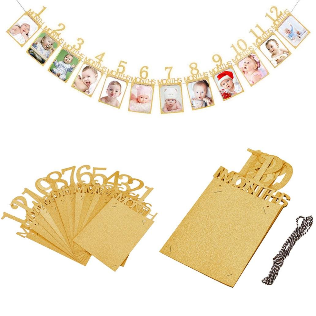 FTXJ Kids Birthday Gift Decorations 1-12 Month Photo Banner Monthly Photo Wall (Gold, 15.2x10.2cm)
