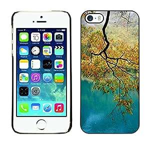 Cubierta de la caja de protección la piel dura para el Apple iPhone 5 / 5S - river autumn fall tree leaves golden