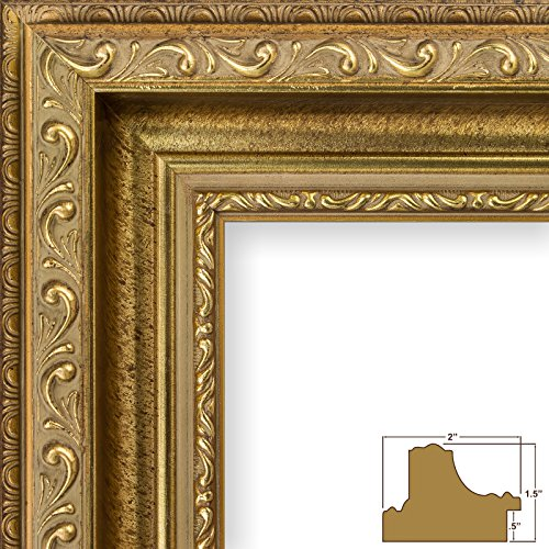 Craig Frames 6607 11 by 14-Inch Picture Frame, Smooth Ornate Finish, 2-Inch Wide, Brushed Antique Gold (Frames Picture Ornate Gold)