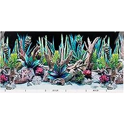 SeaView Double-Sided Desert Dream & Deep Flora Terrarium Background, 36\