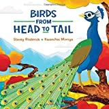 #8: Birds from Head to Tail