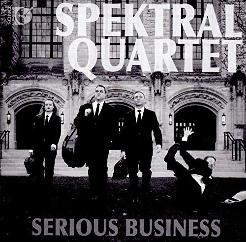 Image result for spektral serious business