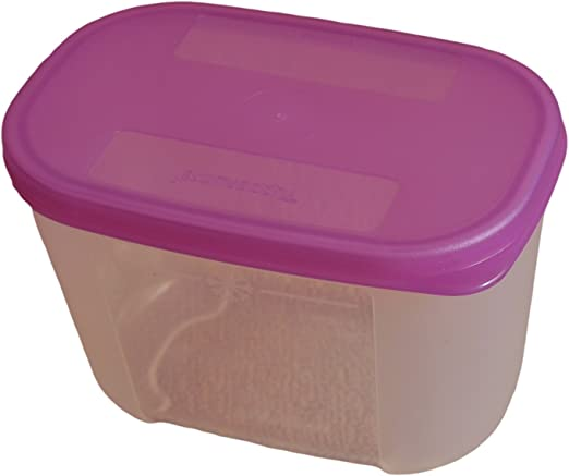 Tupperware Mini congelador mate, 300 ml: Amazon.es: Hogar