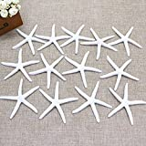 IDS Pack Of 12 Resin Pencil Finger Starfish for Wedding Decor, Home Decor and Craft Project,White