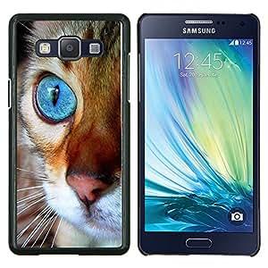 Maine Coon ojo azul anaranjado del gato- Metal de aluminio y de plástico duro Caja del teléfono - Negro - Samsung Galaxy A5 / SM-A500