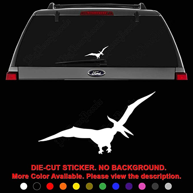 Size #3017 Pterodactyl Dinosaur Decal Sticker Choose Pattern