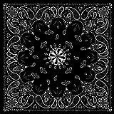 Black Paisley Bandanna