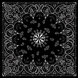 Zanheadgear Premium Bandanna, Cotton, Black Paisley