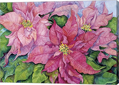 Pink Poinsettia by Joanne Porter Canvas Art