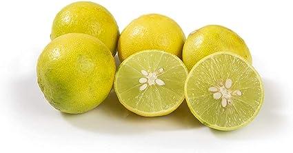 Fresh Lemon, 6 Pieces Pack