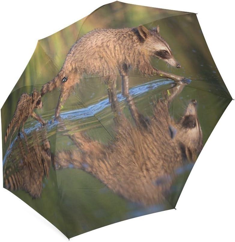 foldable Umbrella Custom Cute Raccoons Cubs Compact Travel Windproof Rainproof