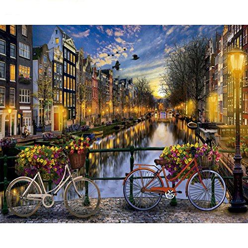 DIY Oil Painting Paint by Numbers Kit with Brushes Paint for Adults Kids Beginner Hand Paintwork Bike Love of Amsterdam 16x20 inch(No ()