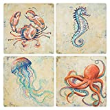 "CoasterStone Creatures of The Ocean Absorbent Coasters (Set of 4), 4-1/4"", Multicolor"