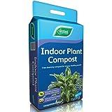 Westland, Compost per piante d'appartamento, 10 l