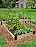 Premium Fir Raised Garden Bed, 3 x 6, Vegetable Garden Bed Planter Box for Outdoor Gardening and Growing Vegetables, Herbs, Flowers, and More