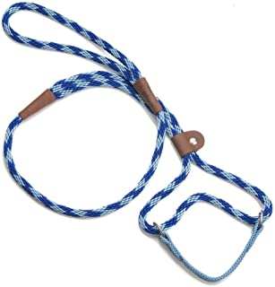product image for Mendota Pet Dog Walker, Martingale Style Leash - Leash & Collar Combo, Made in The USA - Sapphire, 3/8 in x 6 ft - for Small/Medium Breeds