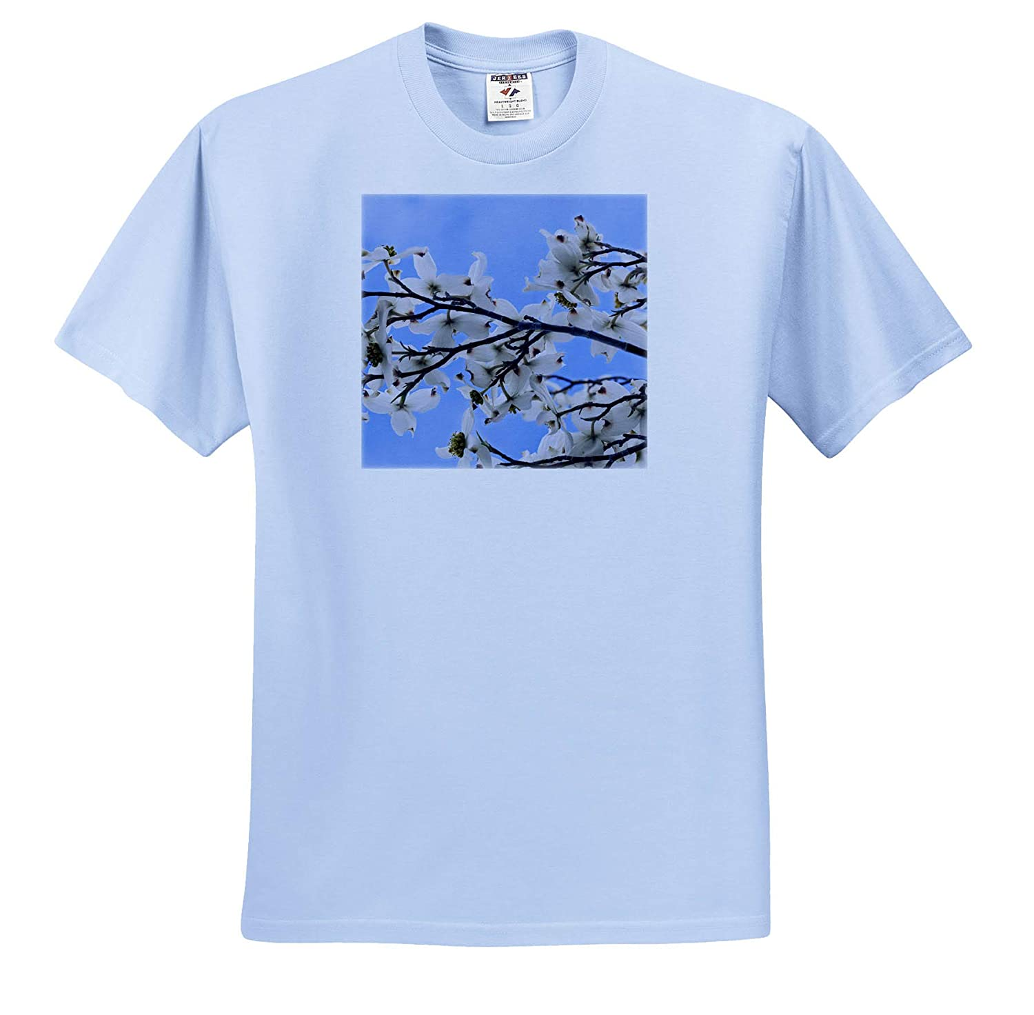 Blooming Dogwood Tree Owens Valley - Adult T-Shirt XL ts/_314670 California Flowers 3dRose Danita Delimont USA