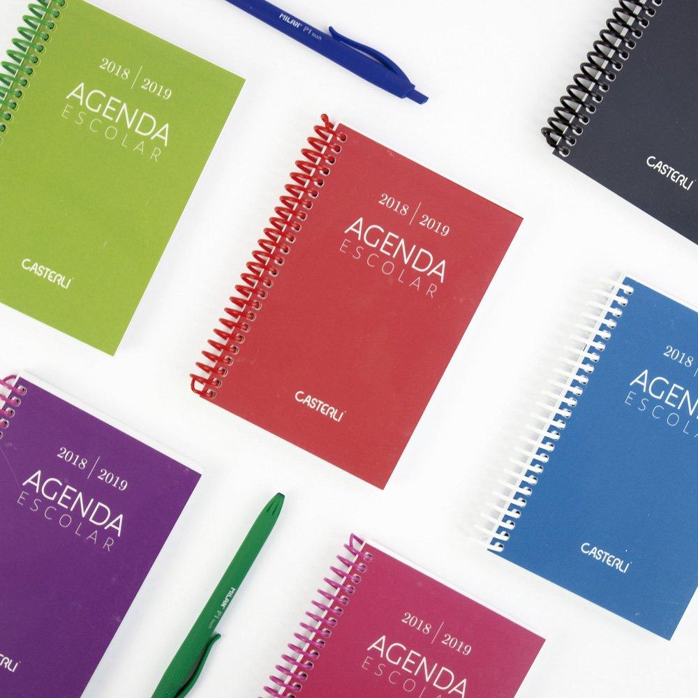 Casterli Iberia - Agenda Escolar 2018/19, día página, tamaño A6 (Rosa): Amazon.es: Oficina y papelería