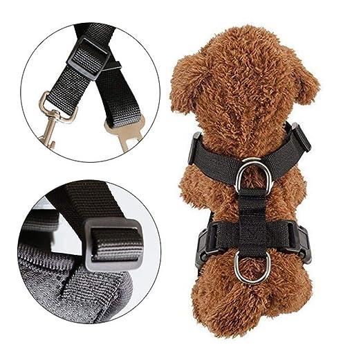Arnés para chaleco de seguridad para autos para perros con ...