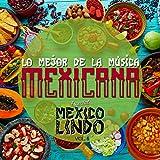 Digital Music Album - Lo Mejor de la Música Mexicana, Especial México Lindo, Vol. 5