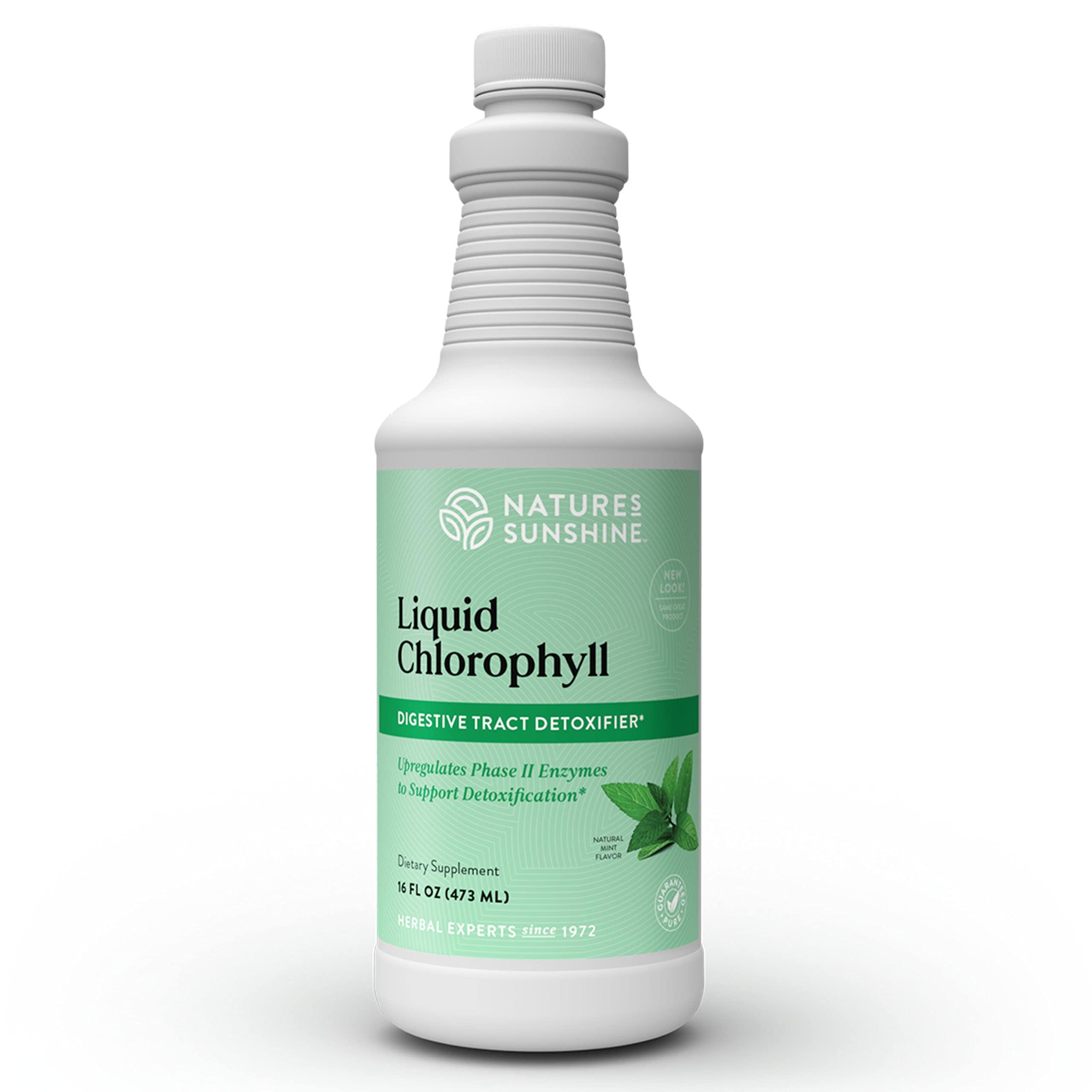 Nature's Sunshine Chlorophyll Liquid, 16 fl. oz., Kosher | Fresh Mint Chlorophyllin Assists Detoxification and Provides Intestinal, Immune, and Digestive System Support