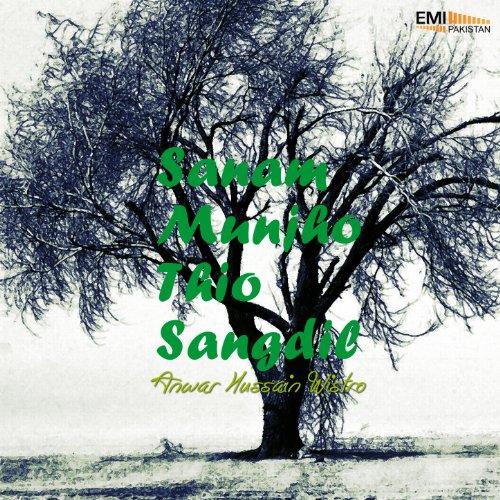 Amazon.com: Sanam Mujho Thio Sangdil: Anwar Hussain Wistro