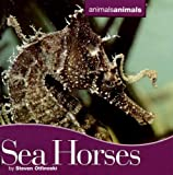 Seahorses, Steven Otfinoski, 0761425292